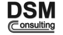 logo de Decisiones, Soluciones y Mejoras