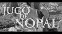 logo de Examecop Comercializadora