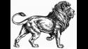 logo de Maquinas Para Madera