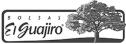 logo de Any pack Any Sizes